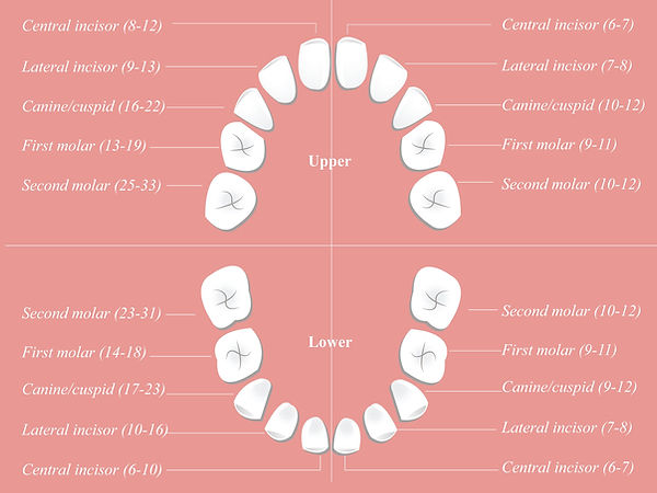 Children-dental-chart-compressor.jpg