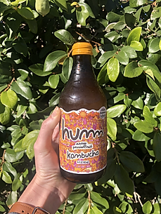 Mango Passionfruit Kombucha