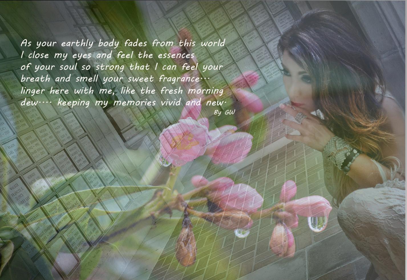 Collage 3web_edited