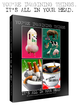 You're Imagining Things-Book 3D.png