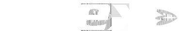 flex-logo-blanco.png