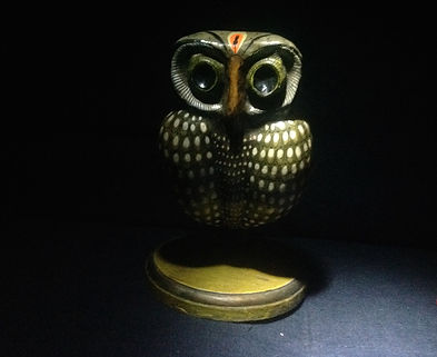 andys owl.JPG