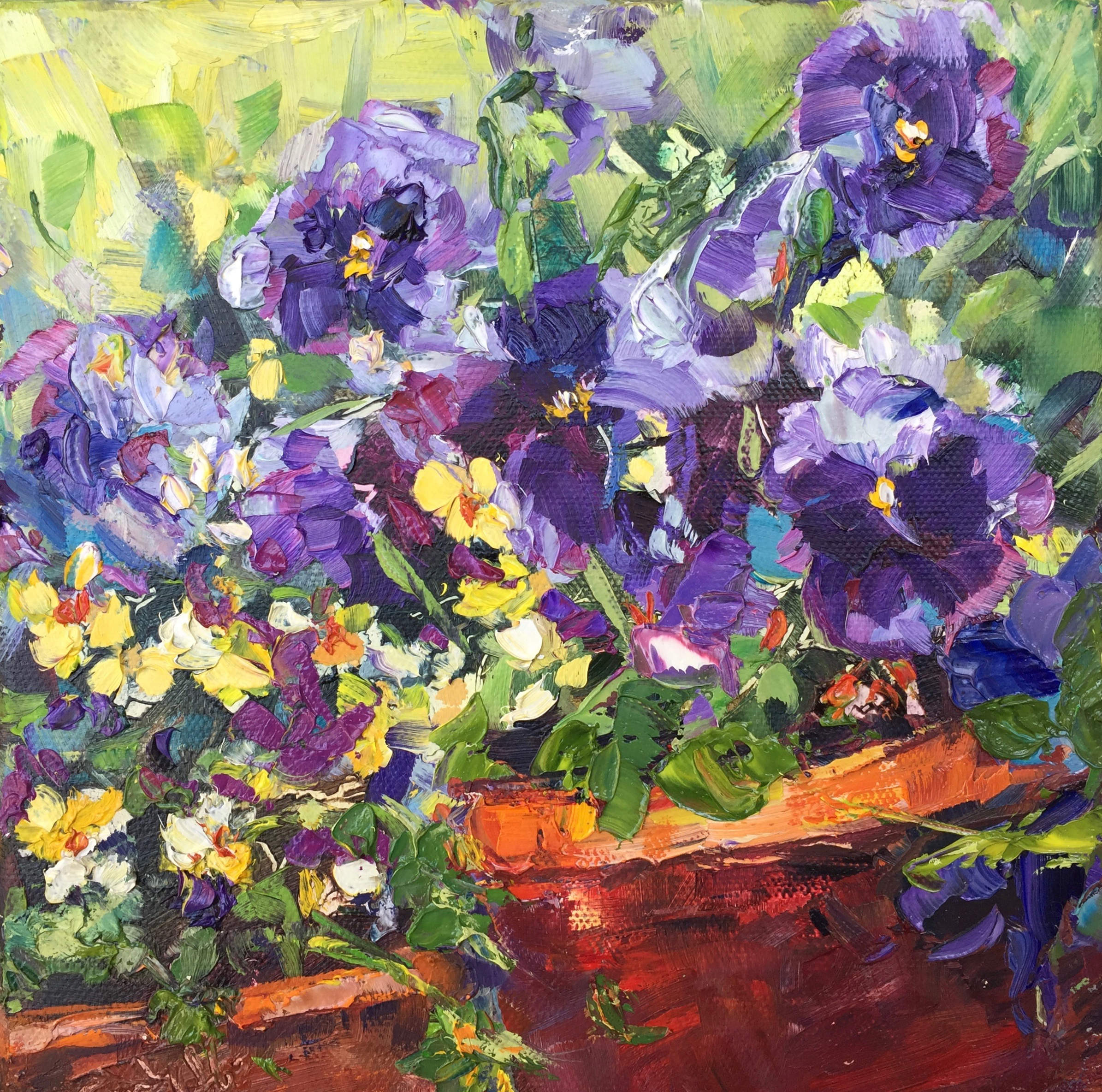 Complimentary Pansies