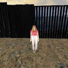 Sally Stahl - Border Stories