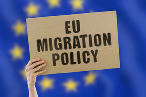 The EU's Institution-Building Capacity and Migration Governance