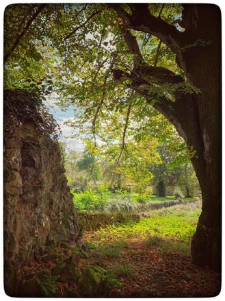 ancien_couvent_monsac_jardin_nature_arbr