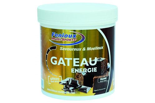 Gâteau FENIOUX ENERGIE - Chocolat - 400g