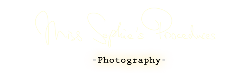 photographyt banner bright copy.PNG