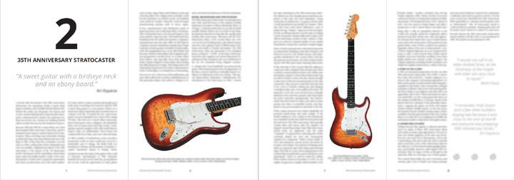 35th anniversary stratocaster book anniversary stratocaster stories Gary Davies