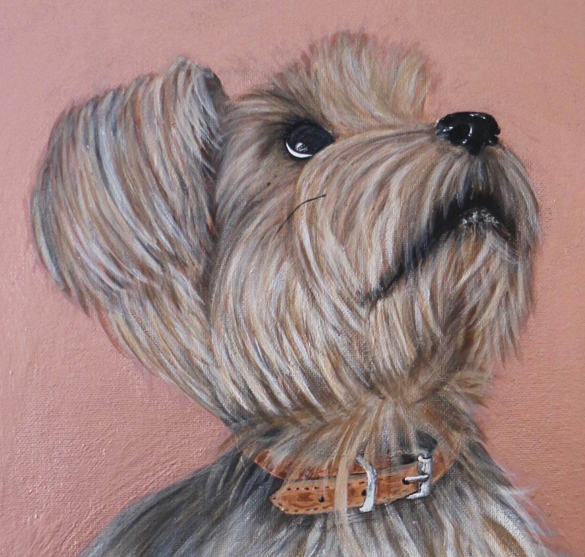 Luna Pet Portraits Natalie Daghestani Art Dubai Artist Dogs2
