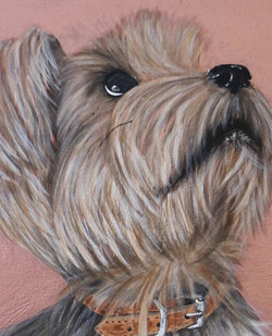Luna Pet Portraits Natalie Daghestani Art Dubai Artist Dogs4