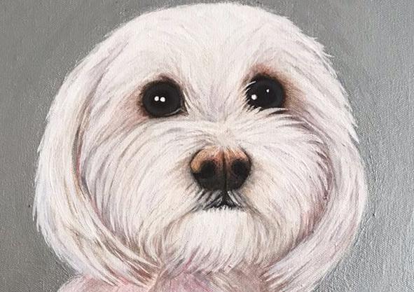 Jimmy Dog Pet Portrait Natalie Daghestani Art Dubai Artist
