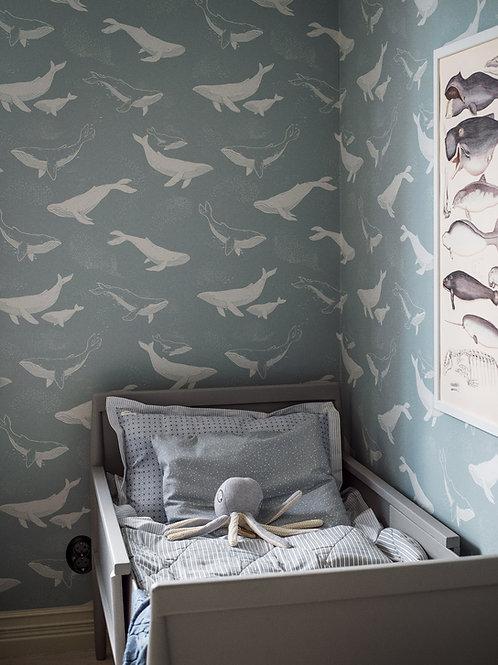 Whales - Newbie Wallpaper