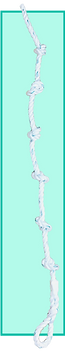 climbing Rope _10_ knots.png
