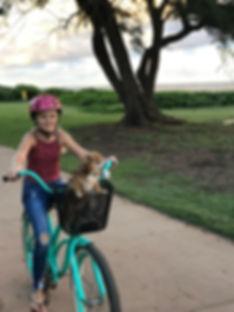 bike-onewheel-rental-kauai.JPG