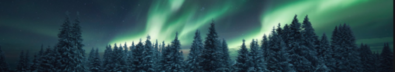 1 TSW NORTHERN LIGHTS.png