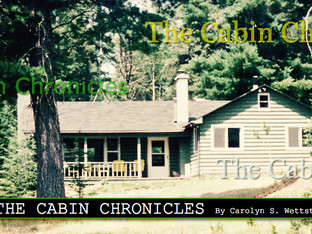 THE TRAVELER...THE CABIN CHRONICLES CONTINUE....