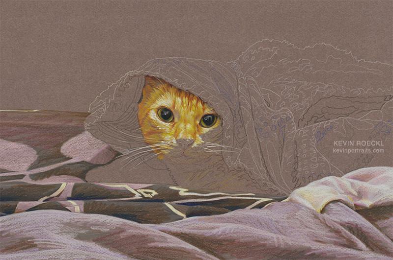 Colored pencil portrait of orange cat in bed, in progress