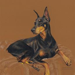 Louie portrait in progress 7