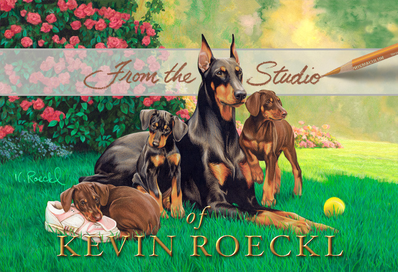 Cover pic image on Kevin Roeckl's Facebook Fan Page
