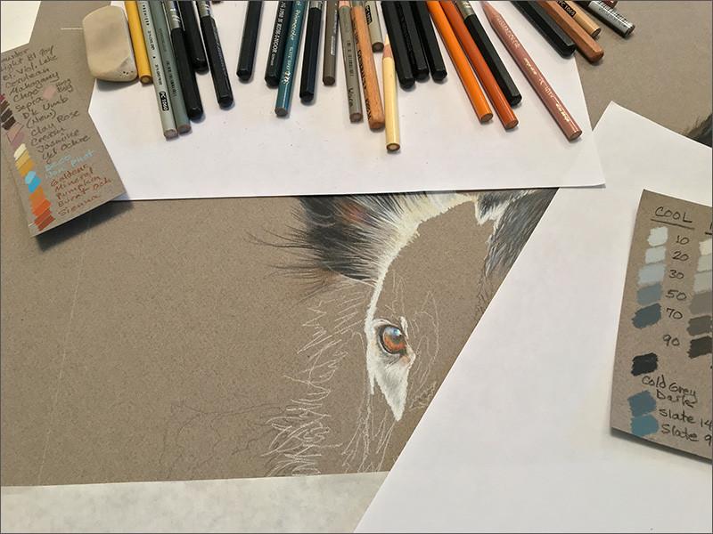 Colored pencil portrait in progress in the studio with Prismacolor pencils