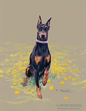 Fine Art portrait of a purebred black Doberman dog