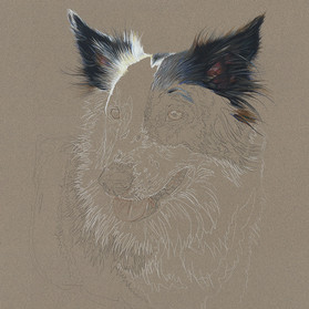 Storm portrait in progress 2