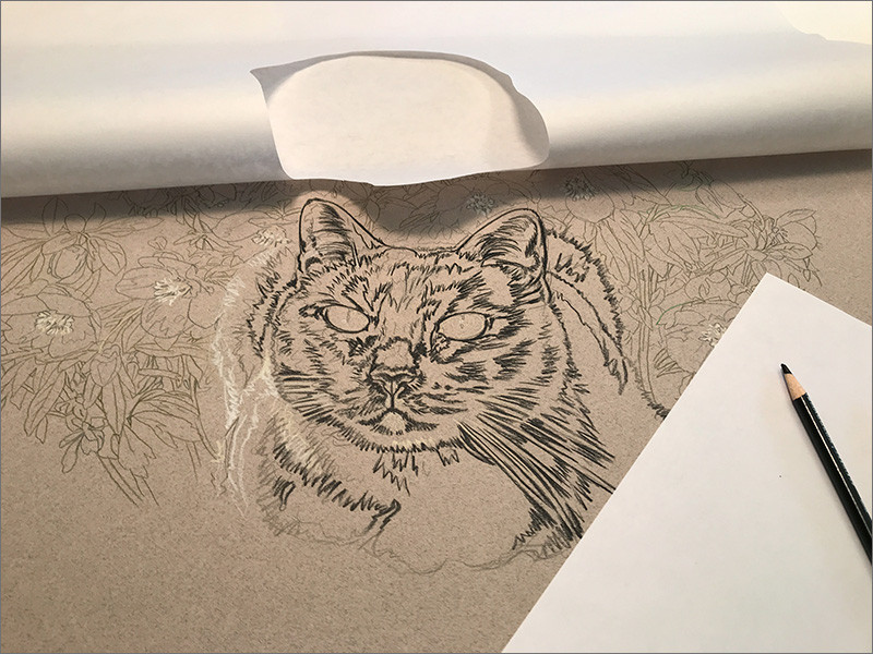 Colored pencil portrait of Cat, in progress, with paper mask cut out