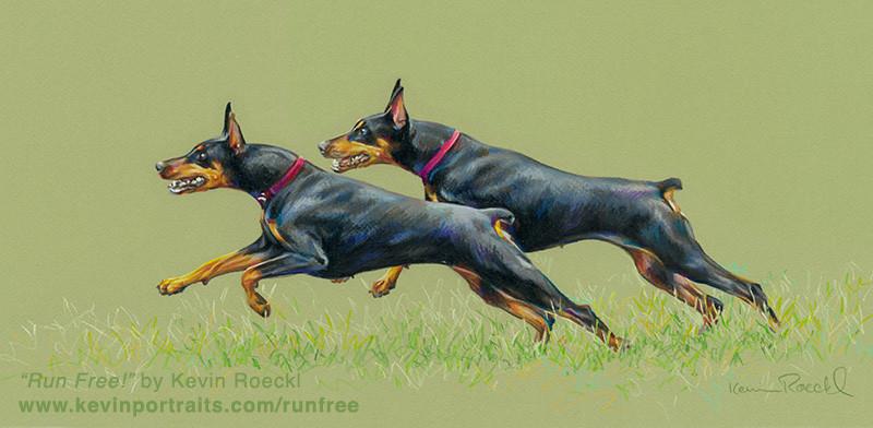 "Fine art print of ""Run Free!"" two Dobermans running, by artist Kevin Roeckl"