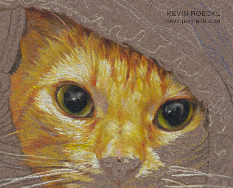 Colored pencil portrait of orange cat in bed, close-up detail of eyes