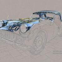 Triumph TR3 portrait in progress 4