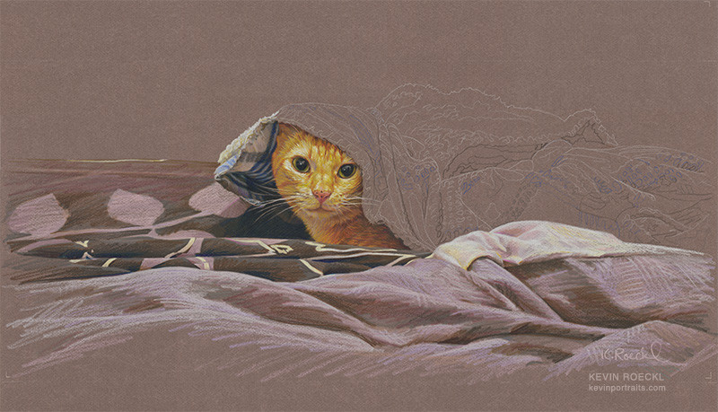 Colored pencil portrait of orange cat under a blanket, in progress