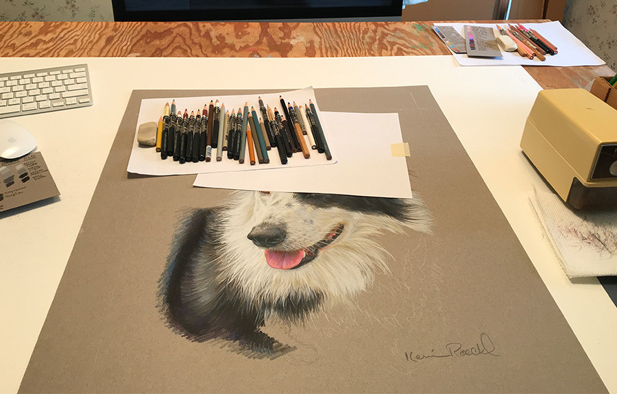 Colored pencil portrait of a Border Collie, with pencils and other art supplies in Kevin's art studio