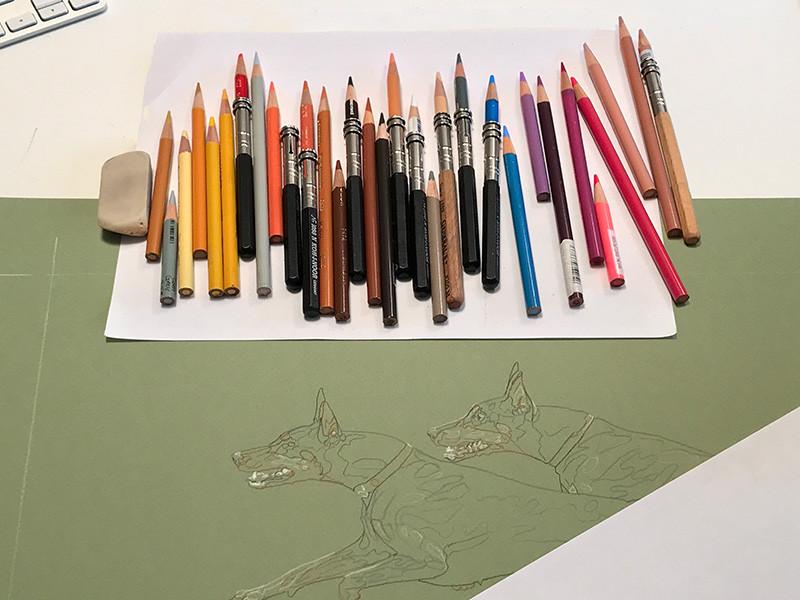 Colored pencils and artwork of Dobermans in the art studio