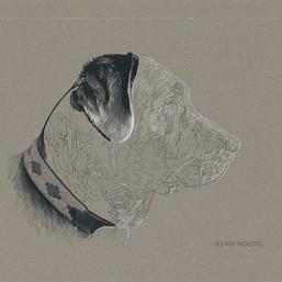 Luca portrait in progress 1