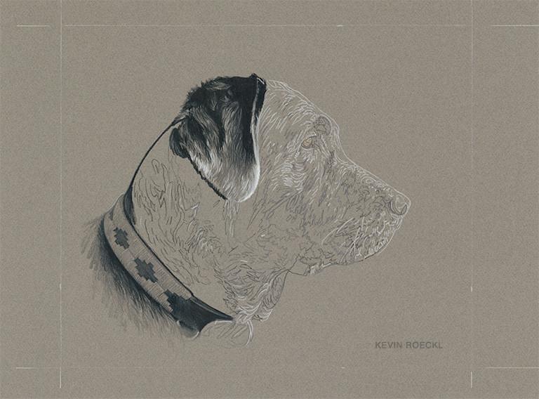 Grisaille colored pencil portrait of black Lab, Labrador Retriever dog