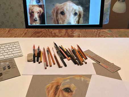 Carly portrait in progress 3