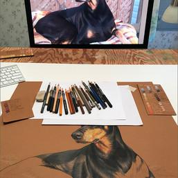 Louie portrait in progress 3