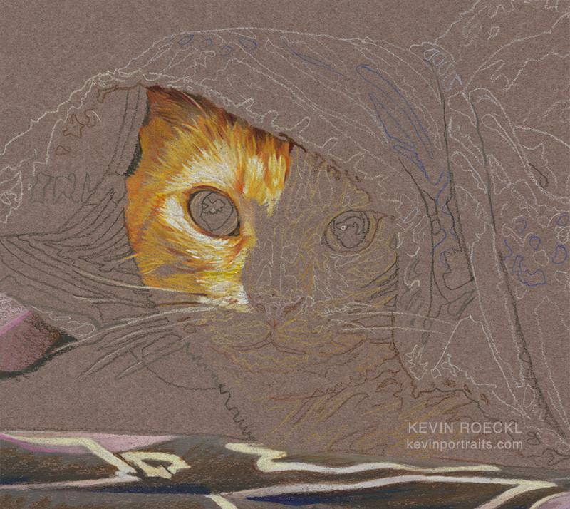 Colored pencil portrait of orange cat, in progress