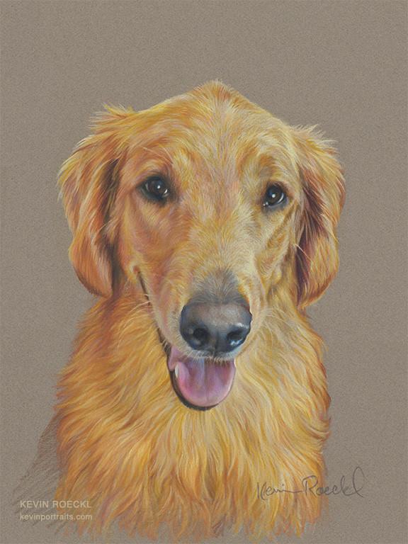 Fine art portrait of Golden Retriever Service Dog, done with Prismacolor colored pencils on grey Canson Mi-Teintes pastel paper