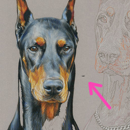 Moto and Candy portrait in progress 7