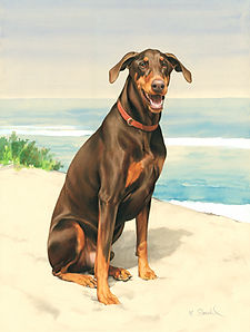 Fine Art portrait of a natural-eared Doberman in a beach scene