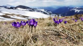 Resiliencia: una actitud de vida