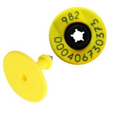 Allflex RFID tags