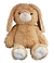 Flopsy the Bunny.png