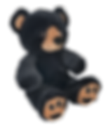 Benjamin the Black Bear.png