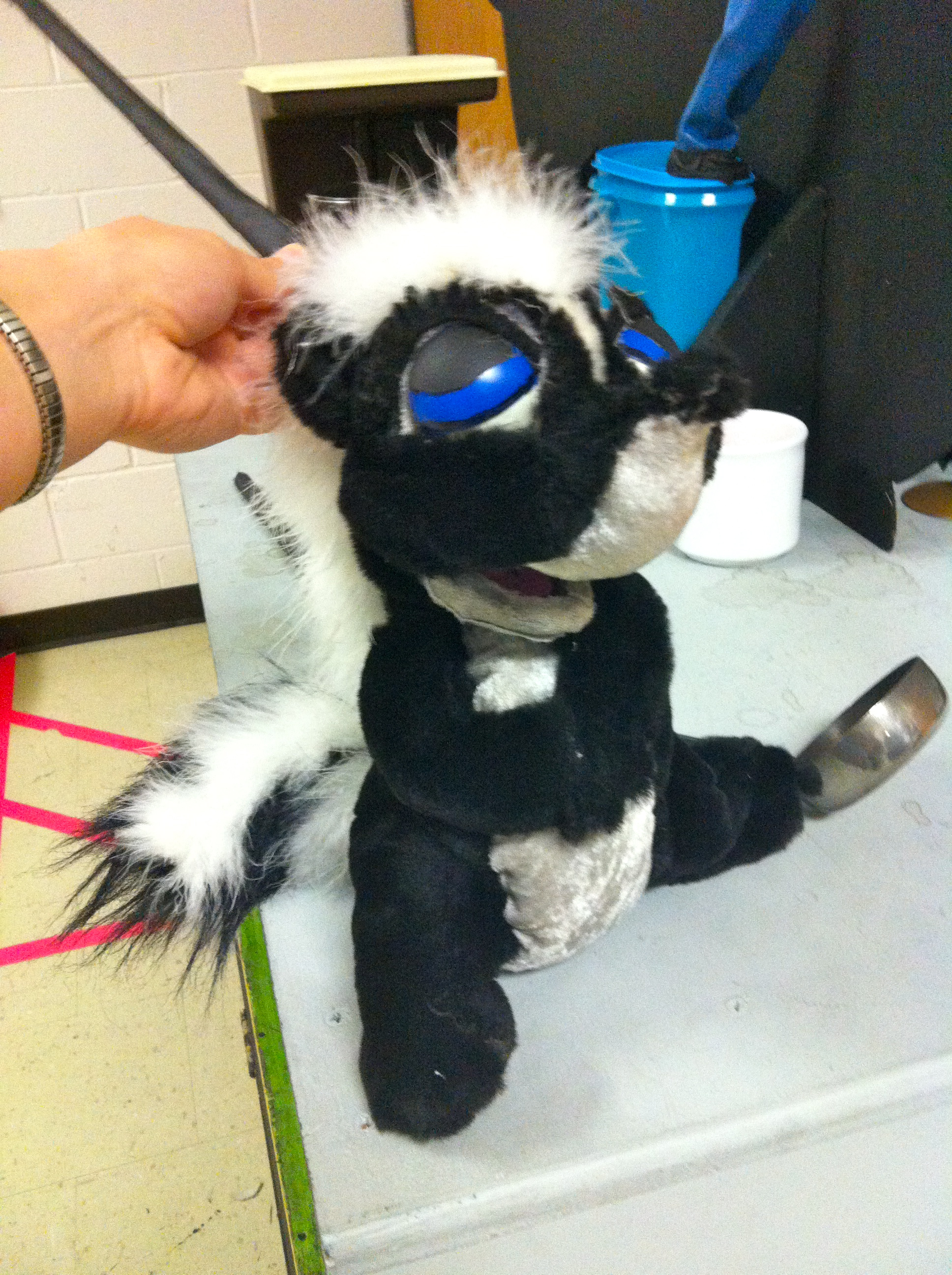 """my skunk puppet for """"Potion Notion"""""""