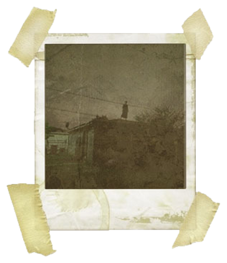 person on roof polaroid.png
