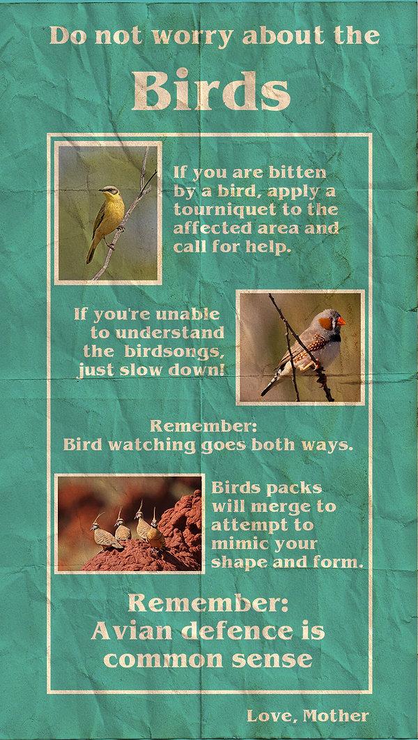 bird brochure final.jpg