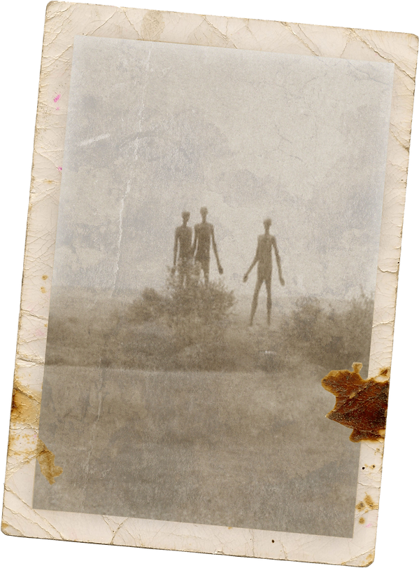 walking beings polaroid.png